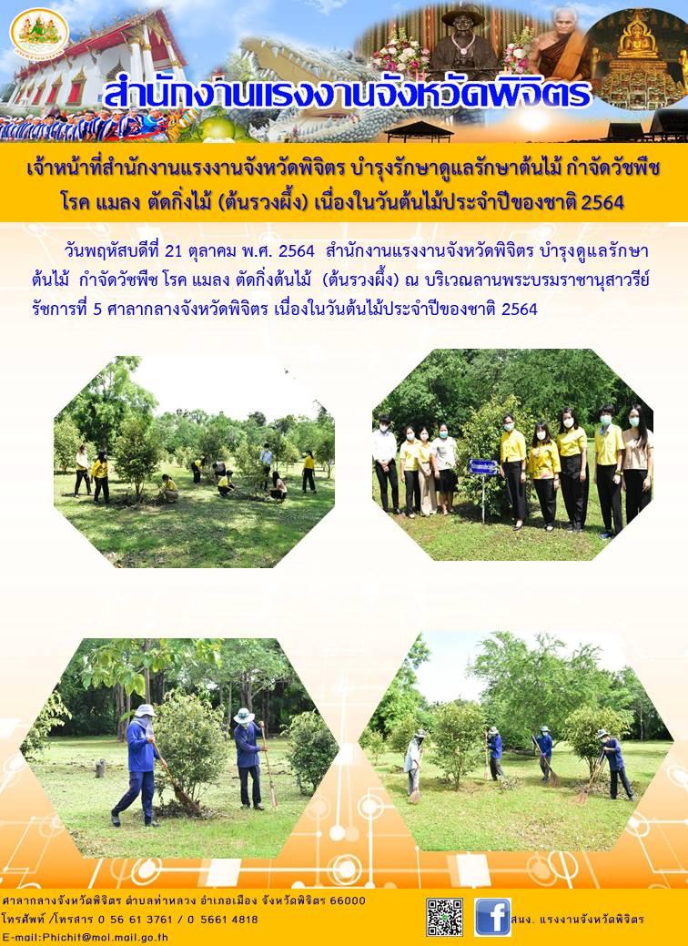 เจ้าหน้าที่สำนักงานแรงงานจังหวัดพิจิตร บำรุงรักษาดูแลรักษาต้นไม้ กำจัดวัชพืช  โรค แมลง ตัดกิ่งไม้ (ต้นรวงผึ้ง) เนื่องในวันต้นไม้ประจำปีของชาติ 2564
